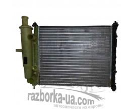 Радиатор водяного охлаждения основной Fiat Brava 1.4 12V (1995-2001) фото
