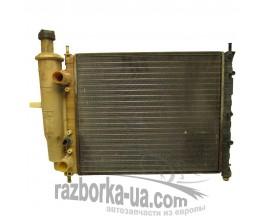 Радиатор водяного охлаждения основной Fiat Brava 1.6 16V (1995-2001) фото