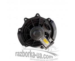 Вентилятор печки Renault Espace 4 (2006-2011) Delphi 52492209 / 52 492 209 6 / 524922096 фото